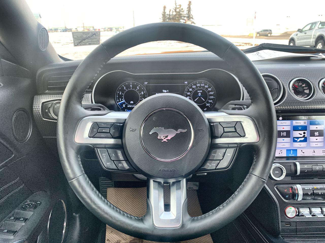 2019 Ford Mustang 2 Door Car