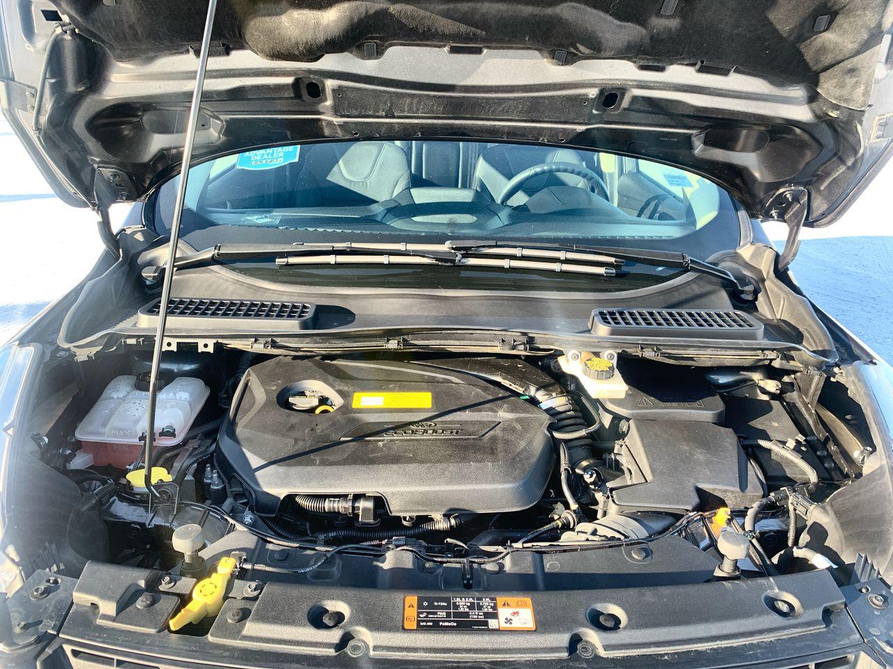 2016 Ford Escape 4 Door Sport Utility